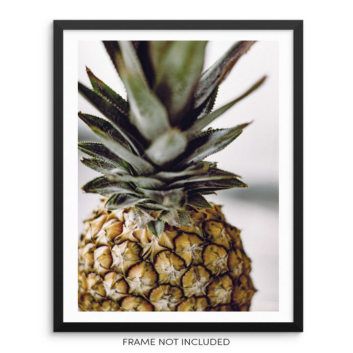 Pineapple Kitchen and Dining Room Modern Wall Decor Art Print
