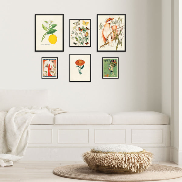 Vintage Art Print Set Butterflies Birds Lemon Flower Vogue Pictures