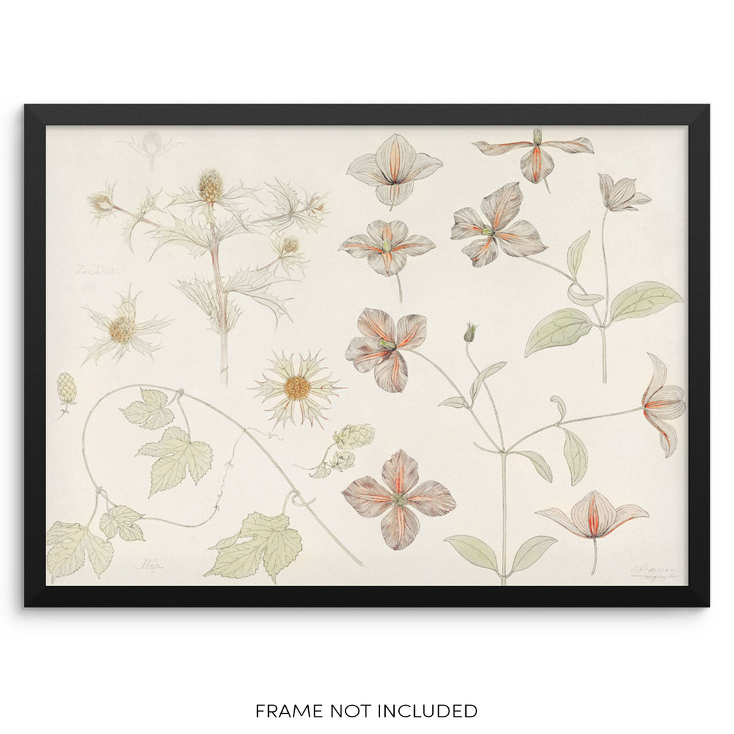 Vintage Botanical Art Print Flowers and Leaves Wall Poster