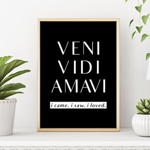 Inspirational Quote Art Print Veni Vidi Amavi I Came I Saw I Loved