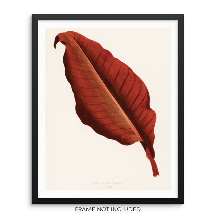 Vintage Burnt Orange Botanical Leaf Art Print Wall Poster