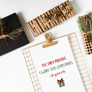 Funny Naughty Christmas Holiday Card The Only Package I Want Is Yours by Sincerely, Not Greeting Cards