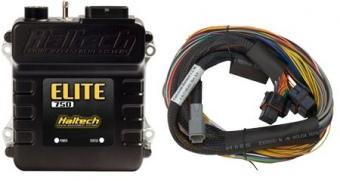 Haltech Elite 750 2.5m (8ft) Basic Universal wire in harness kit FAF Automotive