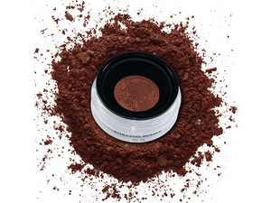 Evolution Powder #5 - Nuestro Secreto