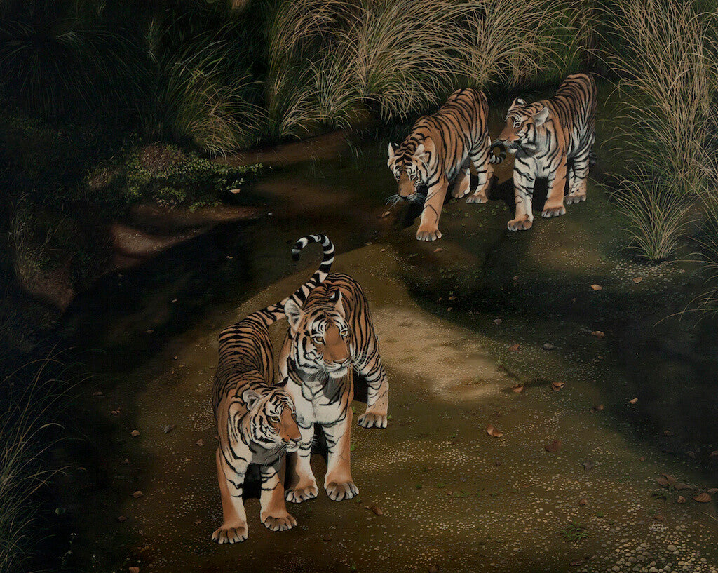 Tigress With Her Sub Adult Cubs