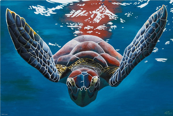 Turtle- marine life series