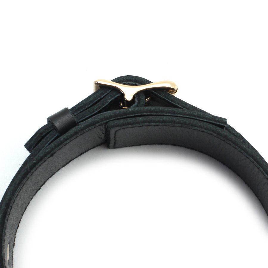 Black Cow Leather Collar With Golden Metal Leash (3 D-rings)