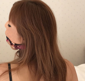 Rose pink PU Leather Silicone Ball gag