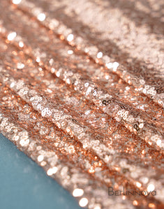 Sequin Fabric Swatch