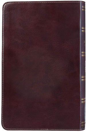 Personalized KJV Holy Bible Giant Print Turquoise and Brown Faux Leather Flexcover