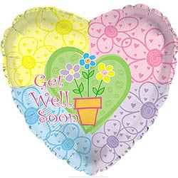 45cm Get Well Flower Pot