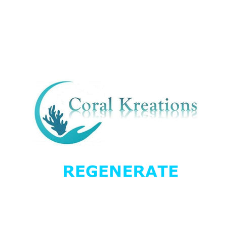 Coral Kreations Regenerate - Organics Resin