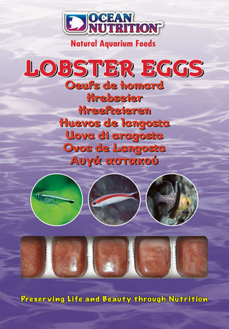 Ocean Nutrition Frozen Lobster Eggs 100g