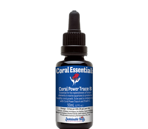 Coral Essentials Coral Power Trace B