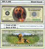 Image of Bloodhound Dog Novelty Currency Bill
