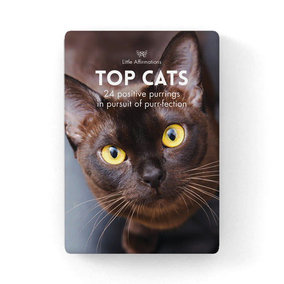 Gift Set of Inspirational Cards - Top Cats