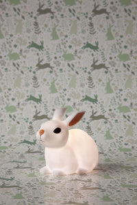 Woodland Dream - Little Bunny Crouching