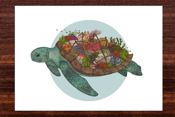 The Coral Reef Turtle