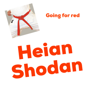 Heian Shodan Kata Video (Going For Red)