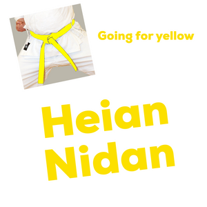 Heian Nidan Kata Video (Going For Yellow)