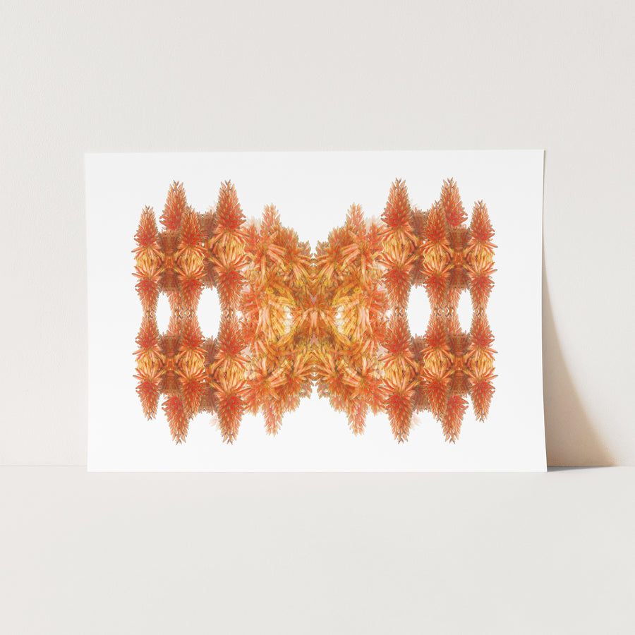 Orange Flower Mandala