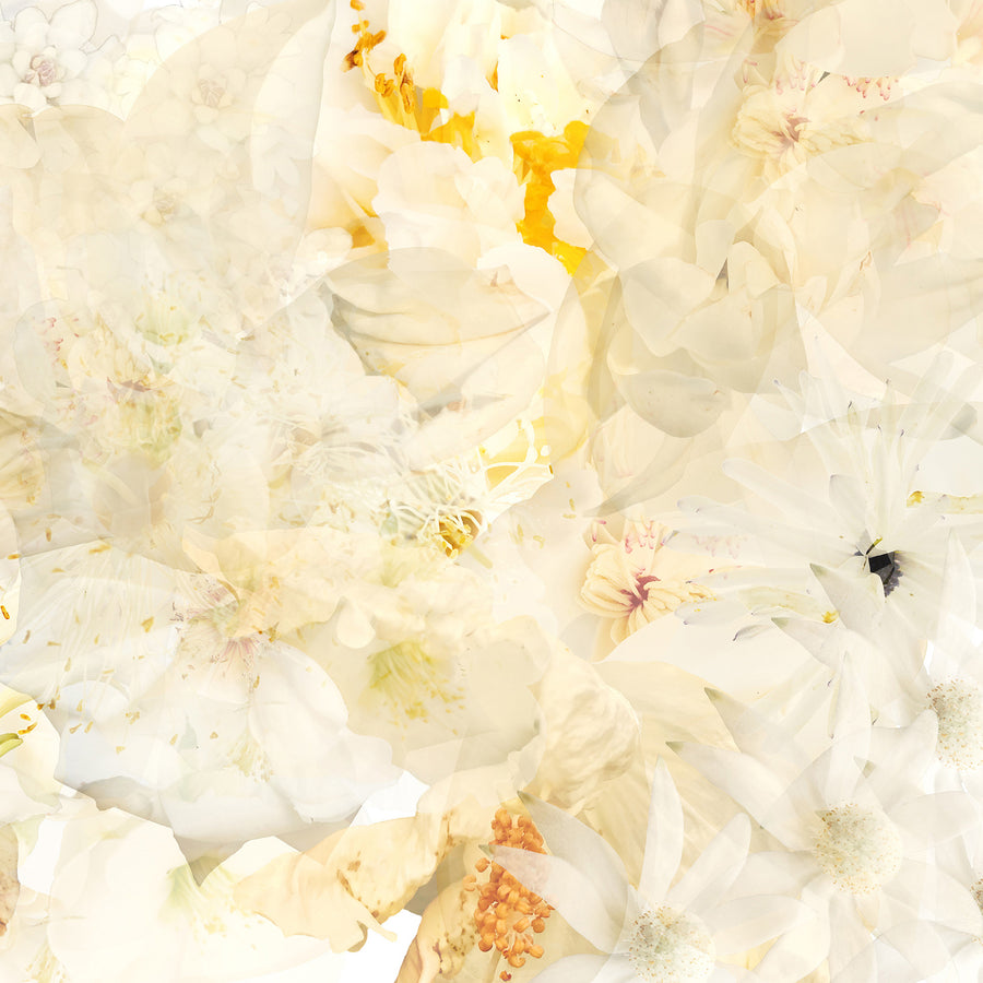 Freesia Garden Greeting Card Detail | Paper and Flower Art