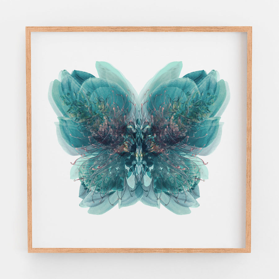 Blue Butterfly | Paper and Flower | Floral Art Print