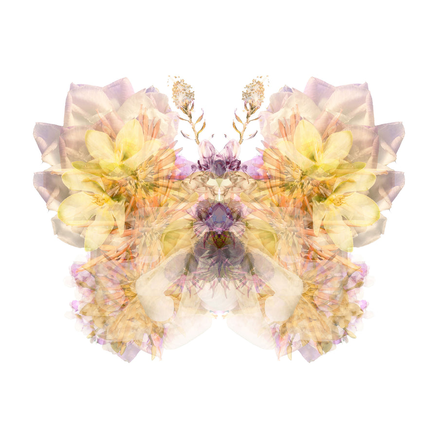 Lilac Floral Butterfly | Paper and Flower | Floral Art Print