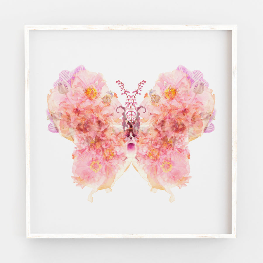 Pink Butterfly | Paper and Flower | Floral Art Print