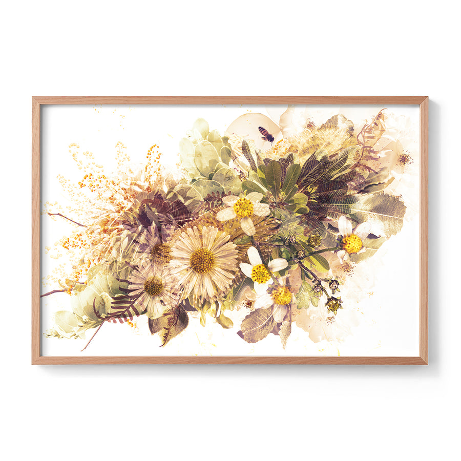 Caramel Native Flower Fine Art Print