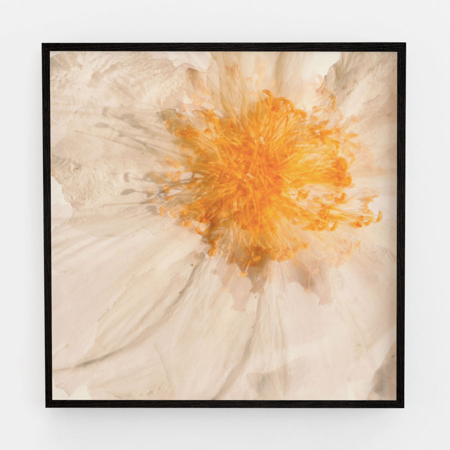 Egg Flower Heart | Paper and Flower | Floral Art Print
