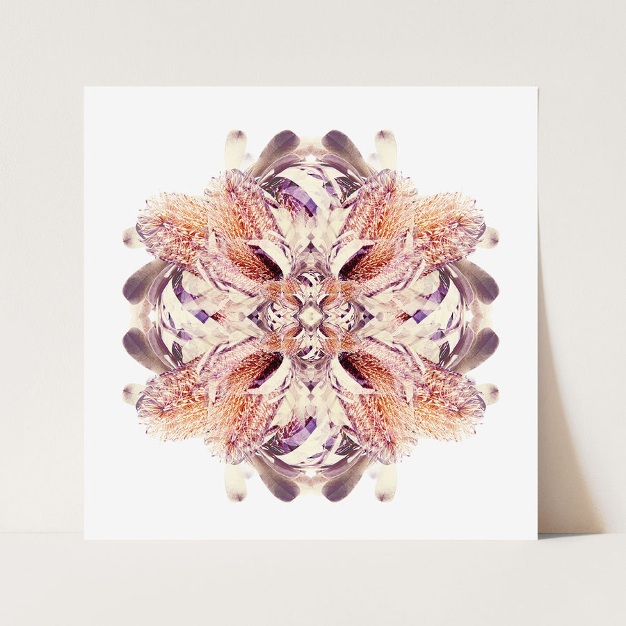 Banksia Flower Mandala Pattern | Paper and Flower | Floral Art Print
