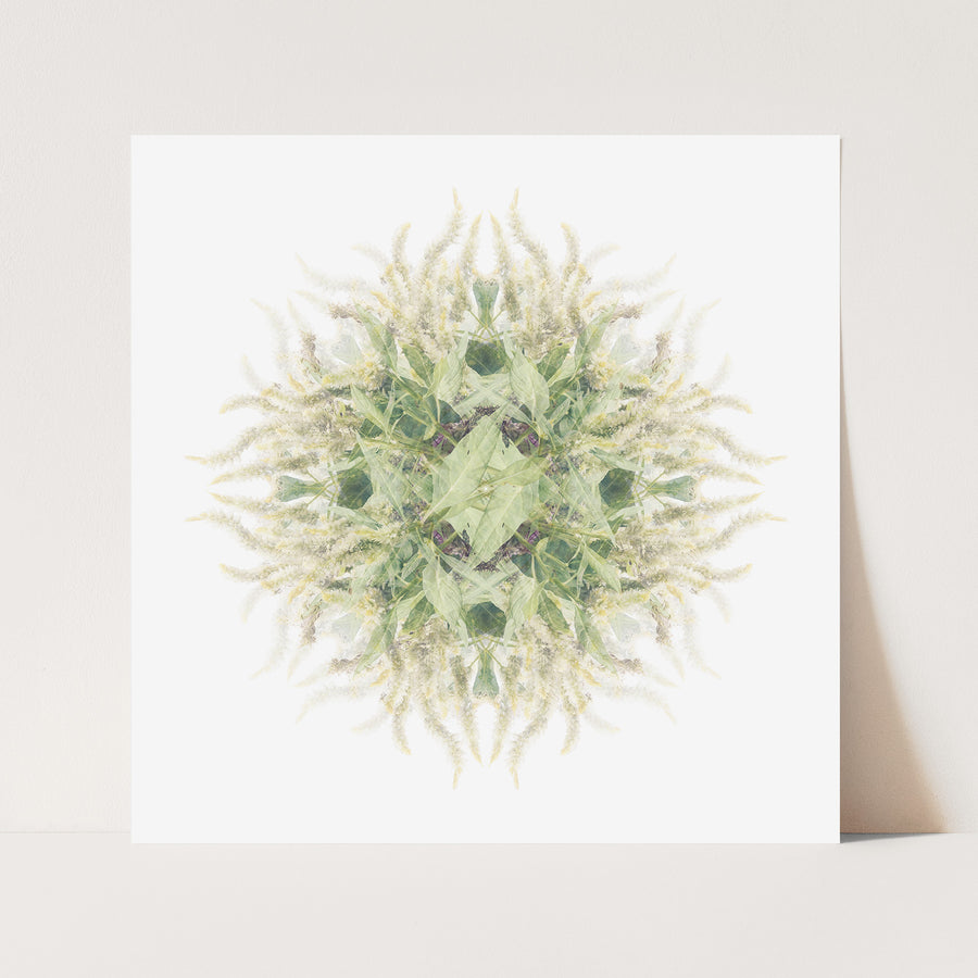 Green and White Vine Pattern | Paper and Flower | Floral Art Print