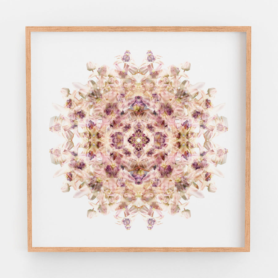 Lilac Wax Flower Mandala Pattern | Paper and Flower | Floral Art Print