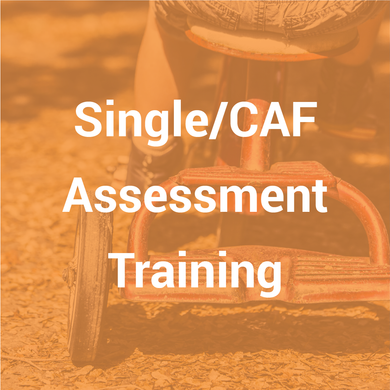 Single Assessment Training (3 day course)