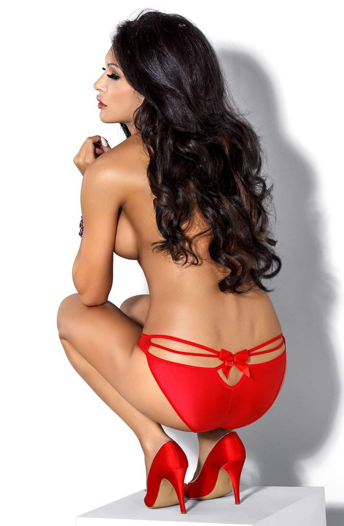 Mimi Brief In Red by Roza - Roza - Katys Boutique Lingerie USA