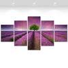 5 Piece Lavender Field Canvas Art Set