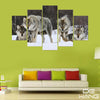 5 Pcs Wolves in the Snow Canvas Print Set
