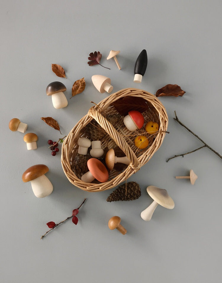 PANIER DE CHAMPIGNONS DE LA FORÊT / FOREST MUSHROOMS BASKET - SOLD OUT -