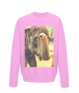 Candyfloss Pink - Elephant Kiss Sweater
