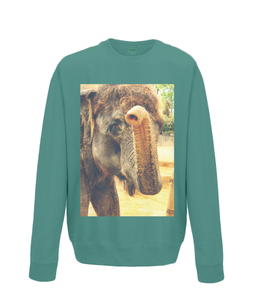 Jade - Elephant Kiss Sweater