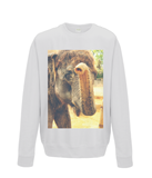 Arctic White - Elephant Kiss Sweater