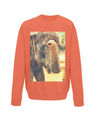 Burnt Orange - Elephant Kiss Sweater