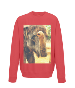 Fire Red - Elephant Kiss Sweater