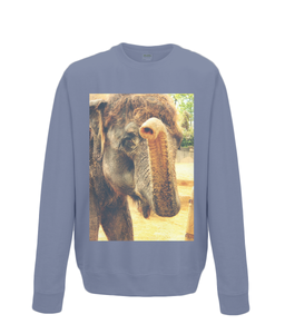 Airforce Blue - Elephant Kiss Sweater