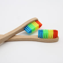 10 Rainbow Eco-Friendly Giving Brushes Cart