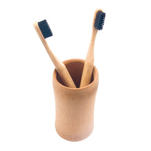 Eco-Friendly Giving Brush Holder + BONUS BRUSH