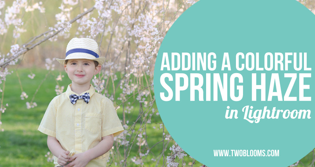 adding a colorful spring haze to photos in LIghtroom