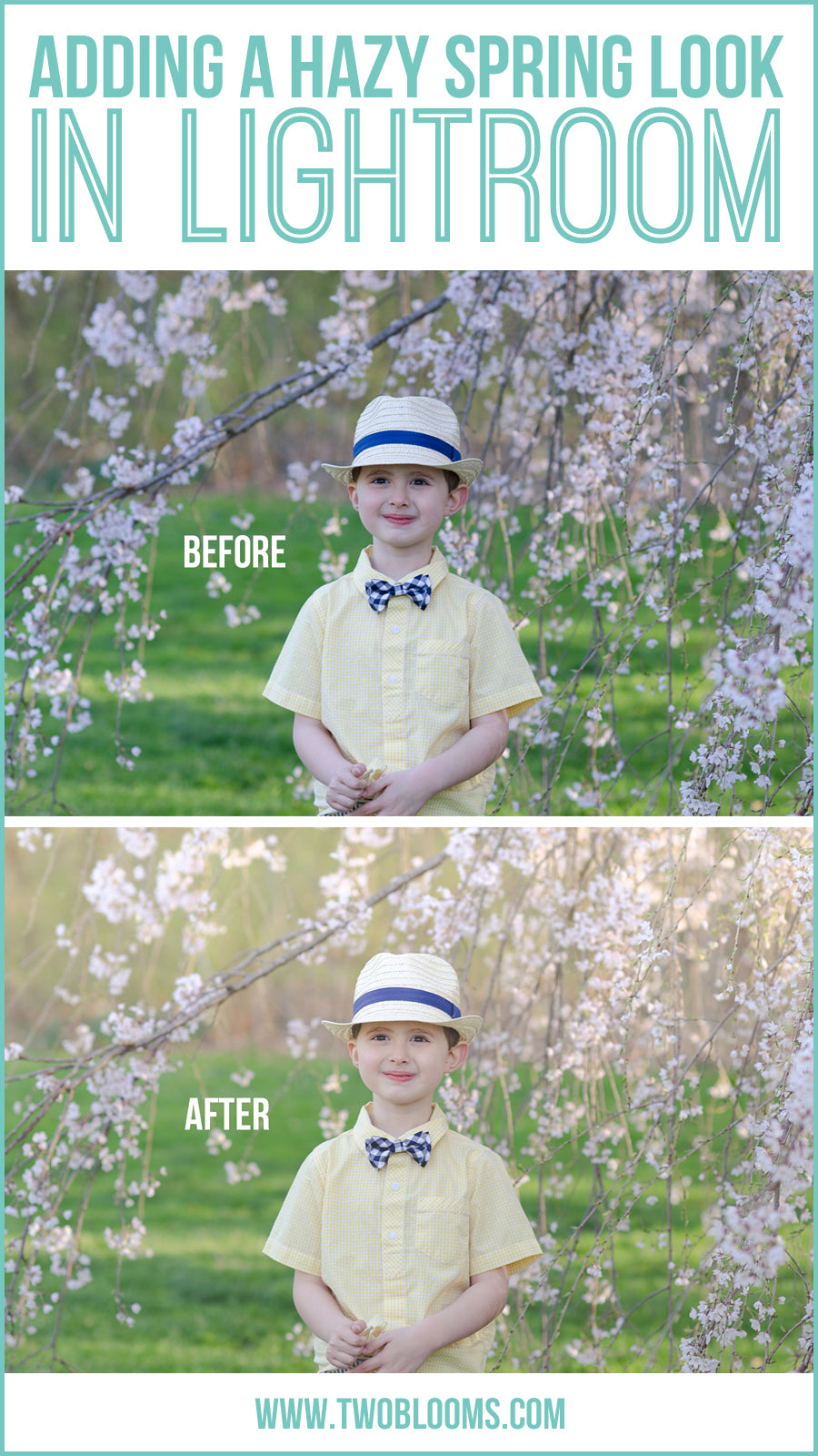 adding a hazy spring look in Lightroom