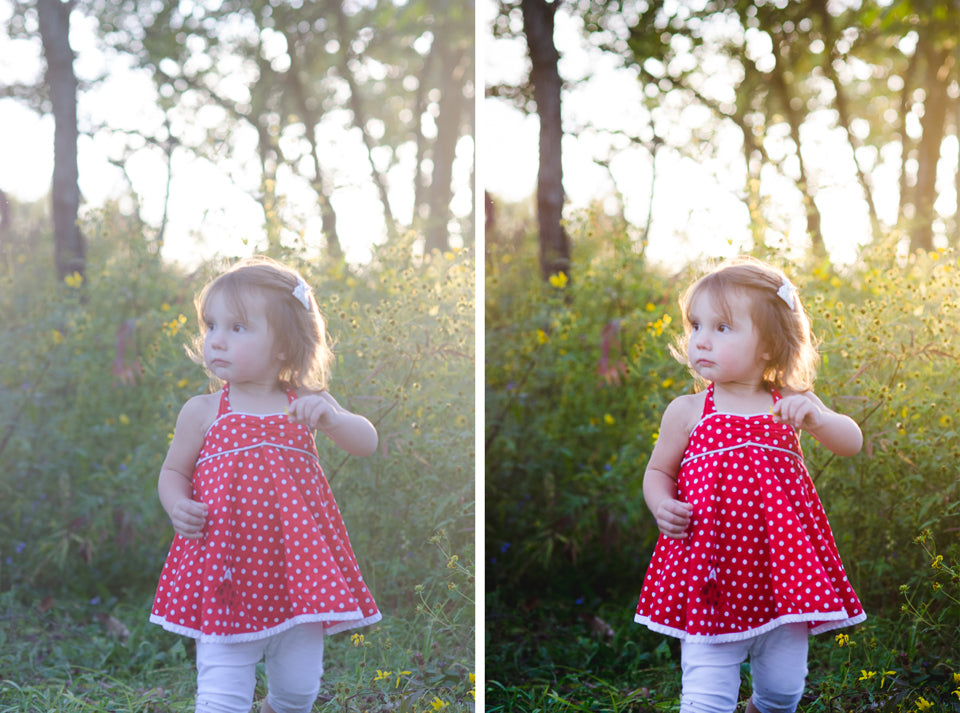 before & after lightroom presets